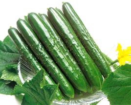 CucumberSummerTop