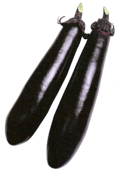 EggplantBlackShine